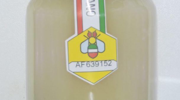 Miele italiano, le schede informative