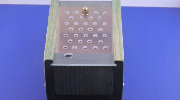 BeeBox per Apipuntura