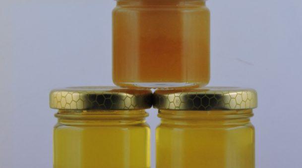 Miele uniflorale, millefiori e melata