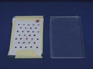 beebox per apipuntura pannello superiore areatobee box per apipuntura pannello superiore areato